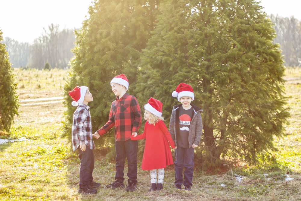 The cutest Christmas mini session at Stimpson's Christmas Tree Farm! What a sweet family!