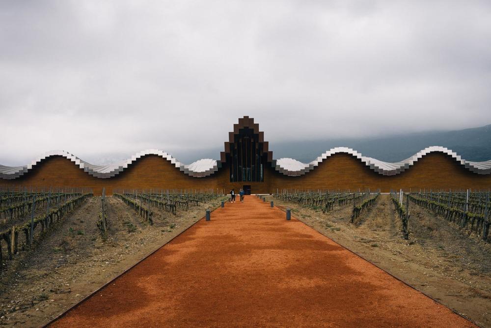 Ysios vineyards.(above)Munia and Mon,super hosts. (below)