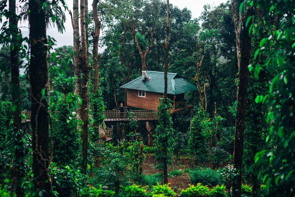 Our treehouse nestled between the trees.