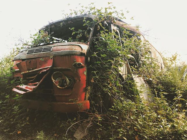 📷 Car grave yard. UK  #naturetakesover #abandonment_issues #abandoned_seekers #jj_abandoned #jj_urbex #partners_in_grime #grime_lords #grime #abandonedporn #abandonedplaces #in_rust_we_trust #inrustwetrust #rsa_nature #rsa_preciousjunk #rsa_abandoned #derelict #decay #decaying #decay_nation #urbextreme #urbex