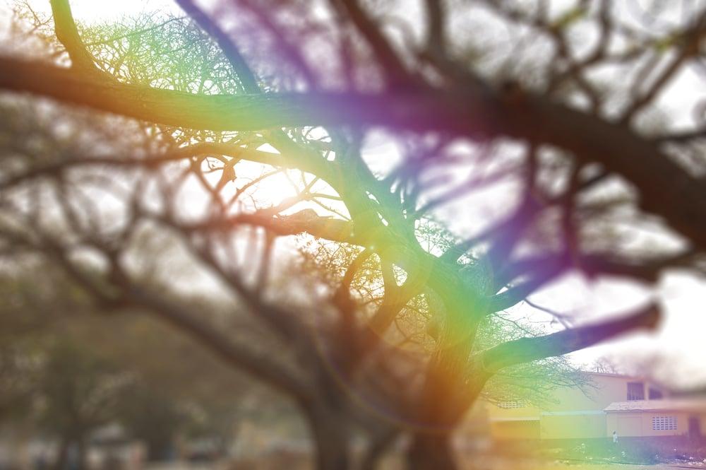 lensflar.jpg