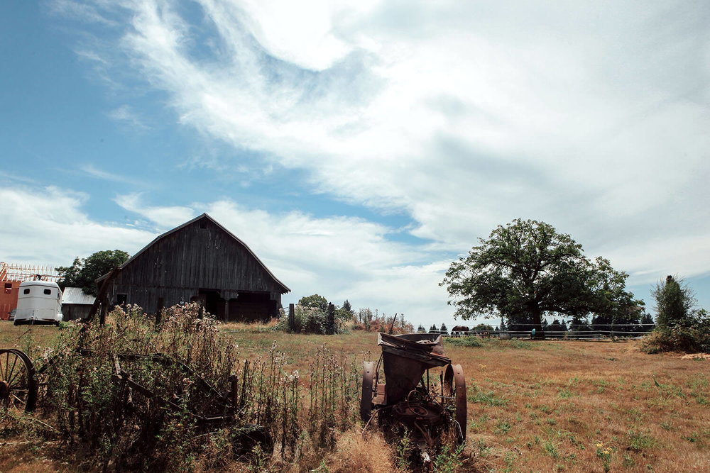 Skunk Valley Farm - Old world charm, blazing the trail to the future.