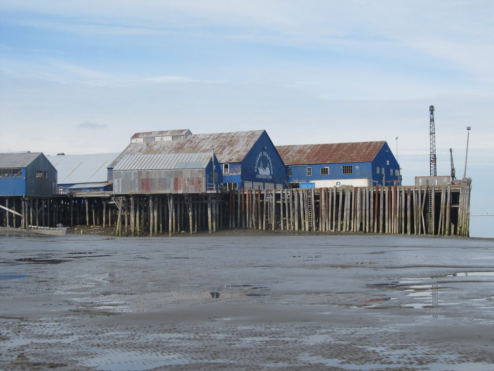 South Naknek's <NN> Cannery. Photo by Katie Ringsmuth.