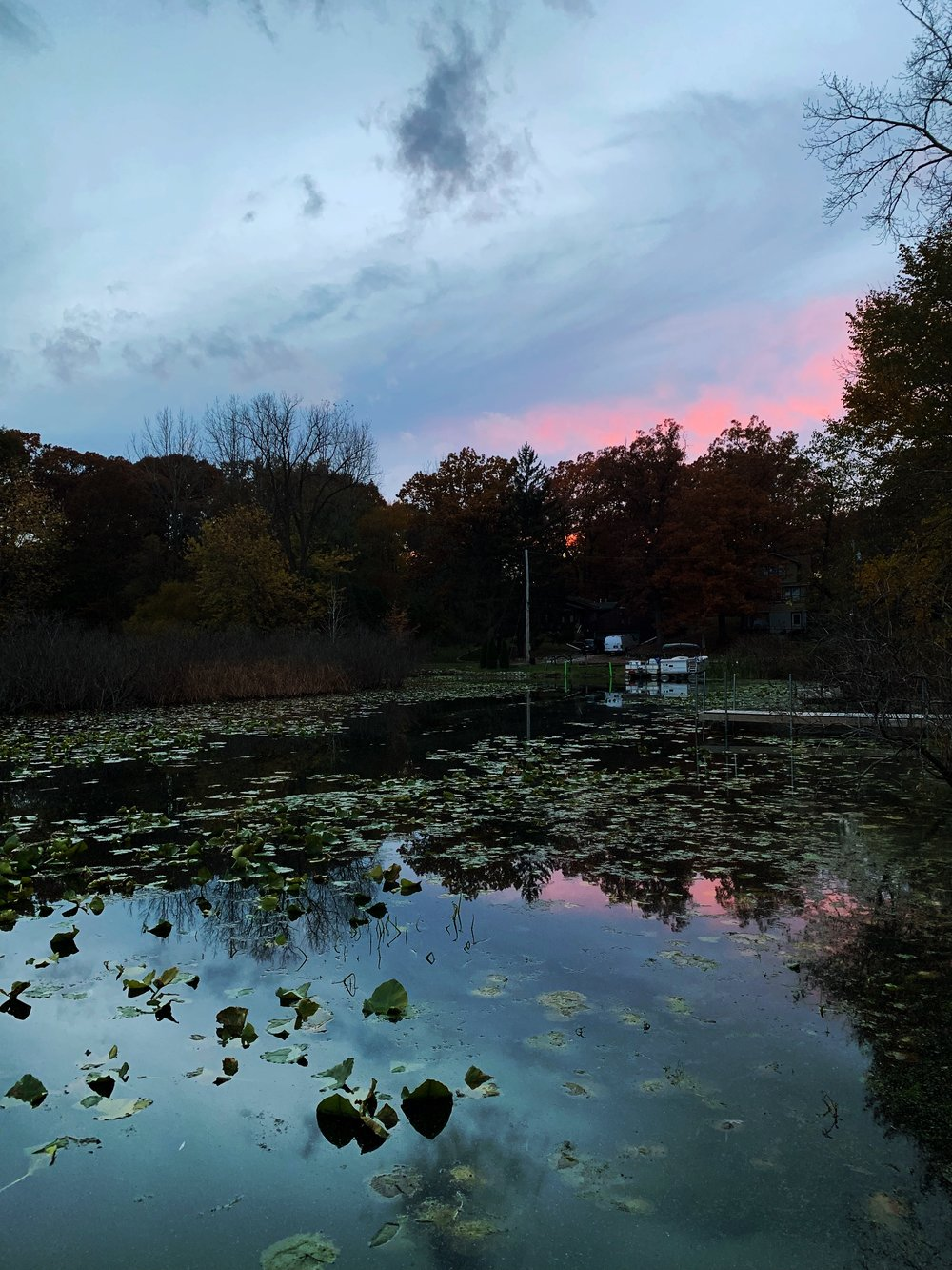 Photo Nov 02, 5 45 56 PM.jpg
