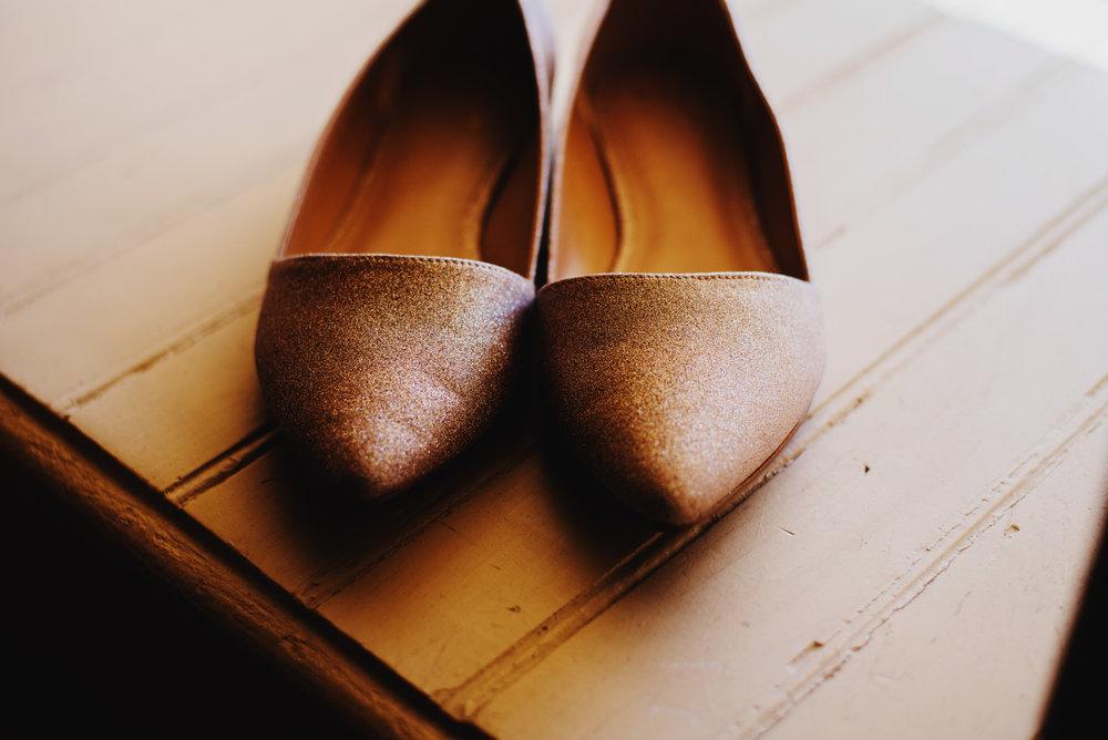 Moreno-Briskey-Renwick-Mansion-Iowa-Wedding_0003.jpg