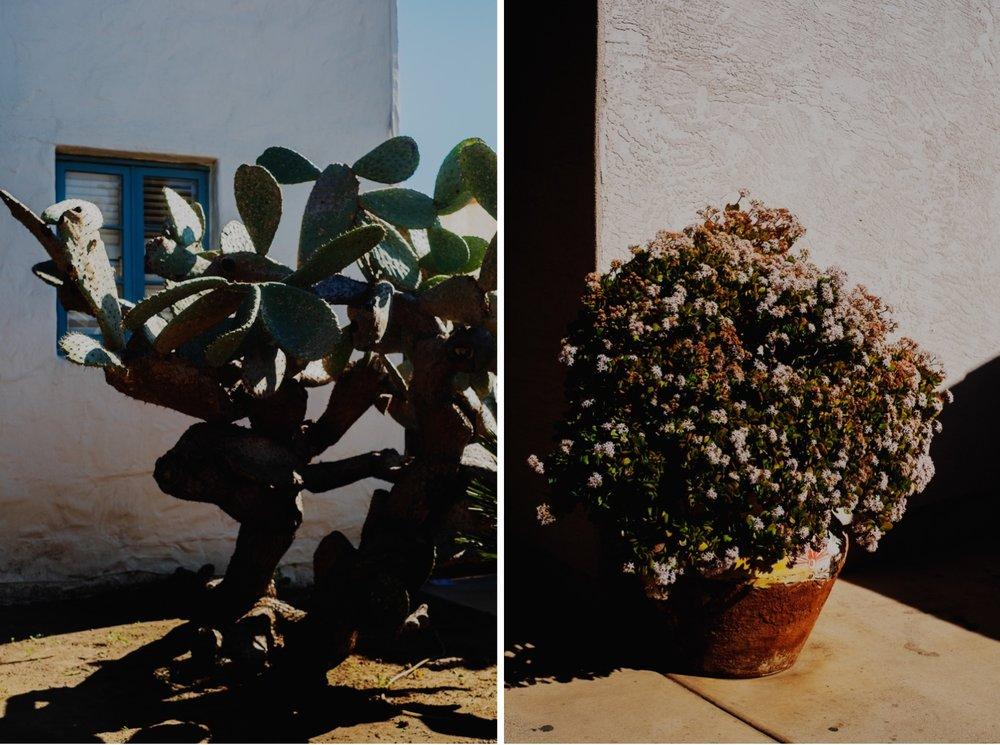 037_Honeymoon-SanDiego_0052_Honeymoon-SanDiego_0053.jpg
