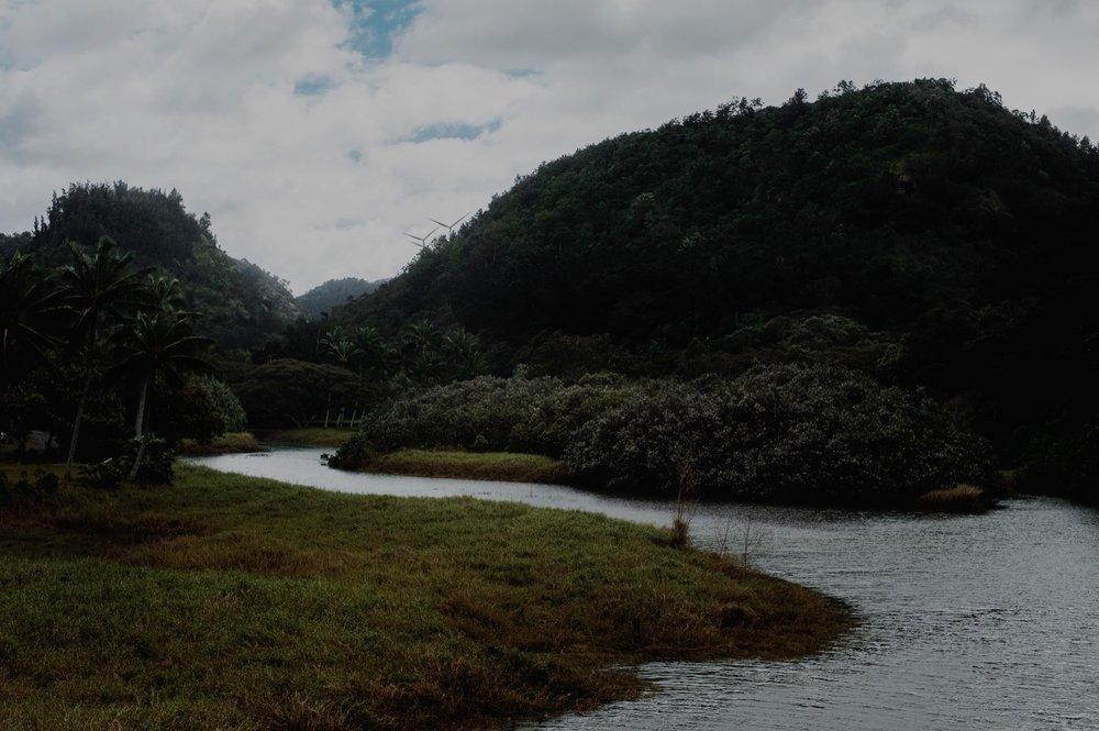 116_Honeymoon-Oahu_0026_oahu.jpg