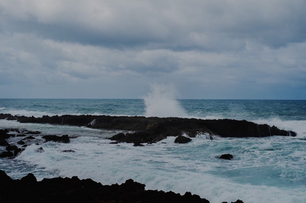 128_Honeymoon-Oahu_0043_oahu.jpg