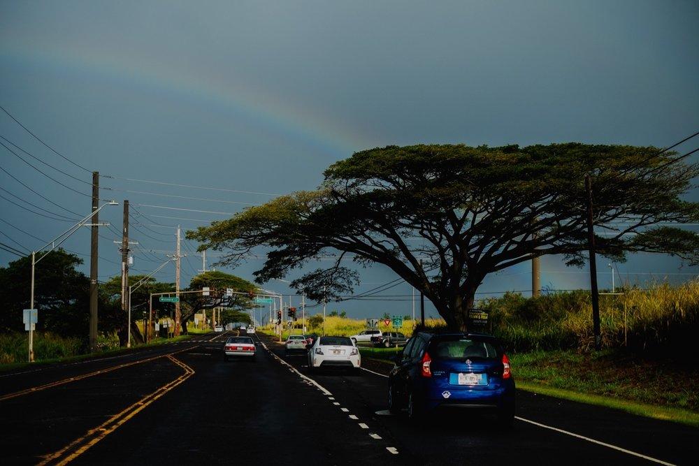 135_Honeymoon-Oahu_0053_oahu.jpg