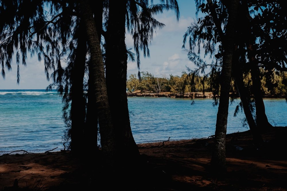 145_Honeymoon-Oahu_0064_oahu.jpg