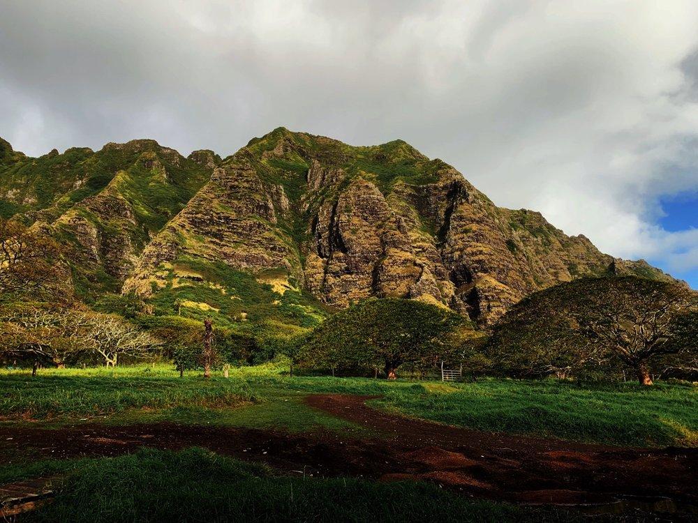 216_Honeymoon-Oahu_0207.jpg