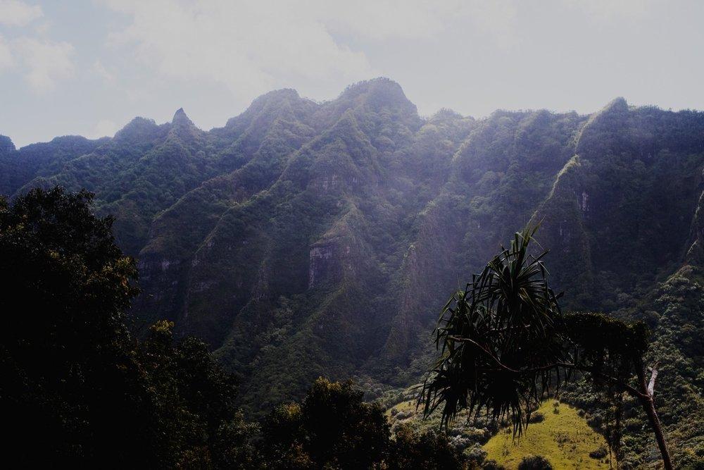 228_Honeymoon-Oahu_0227_oahu.jpg