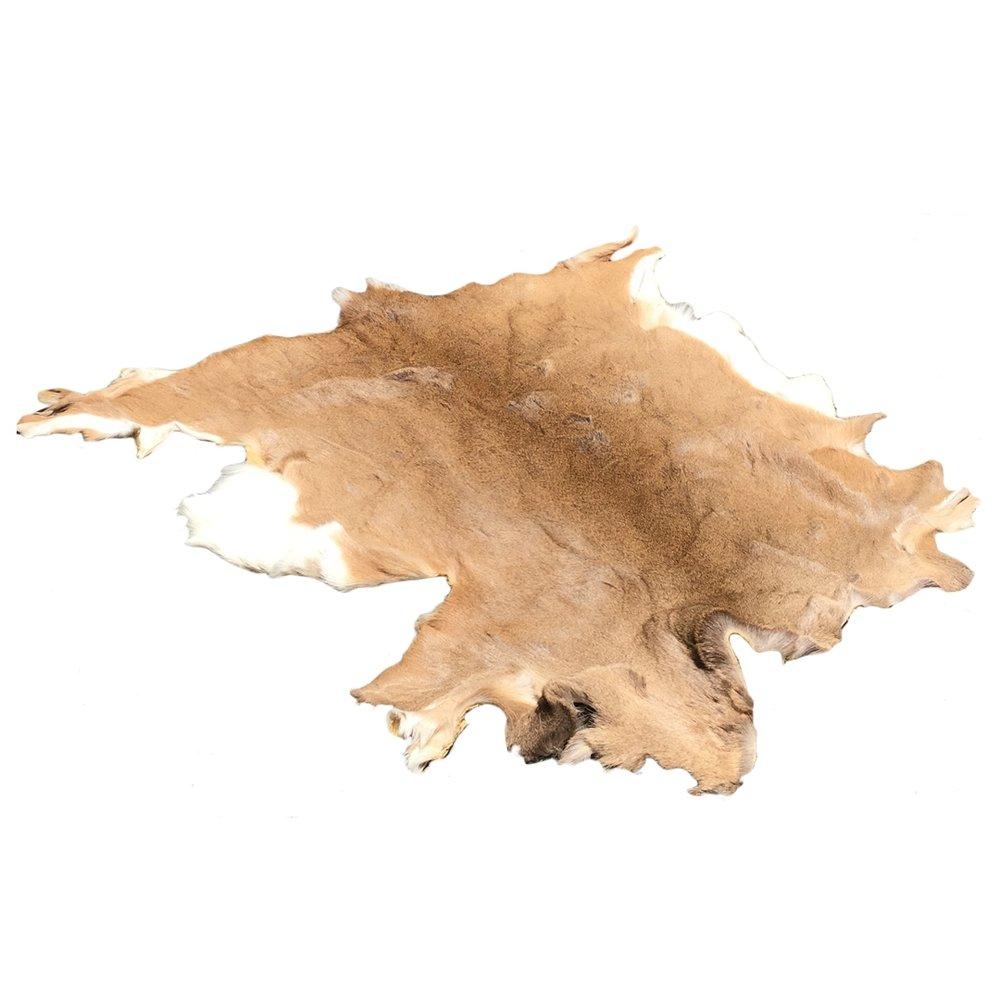 deer skin rug.jpg