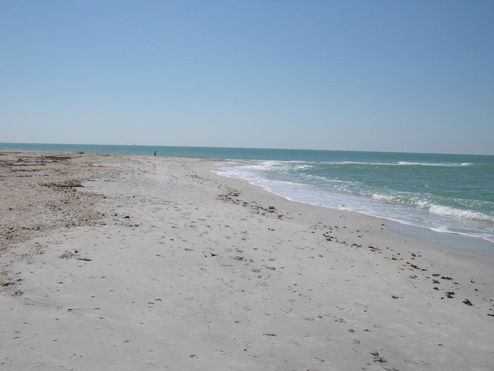 Florida Beach.jpg
