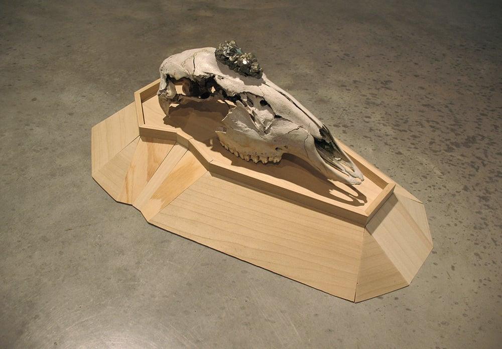 Souvenir Skull Stand