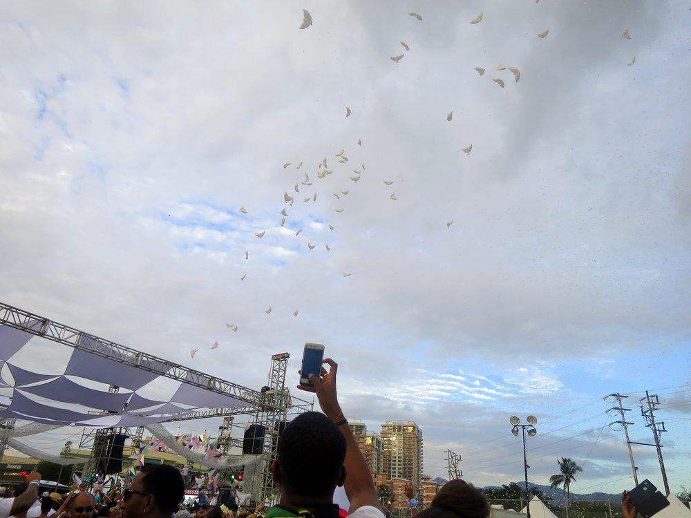 sbw doves2.JPG