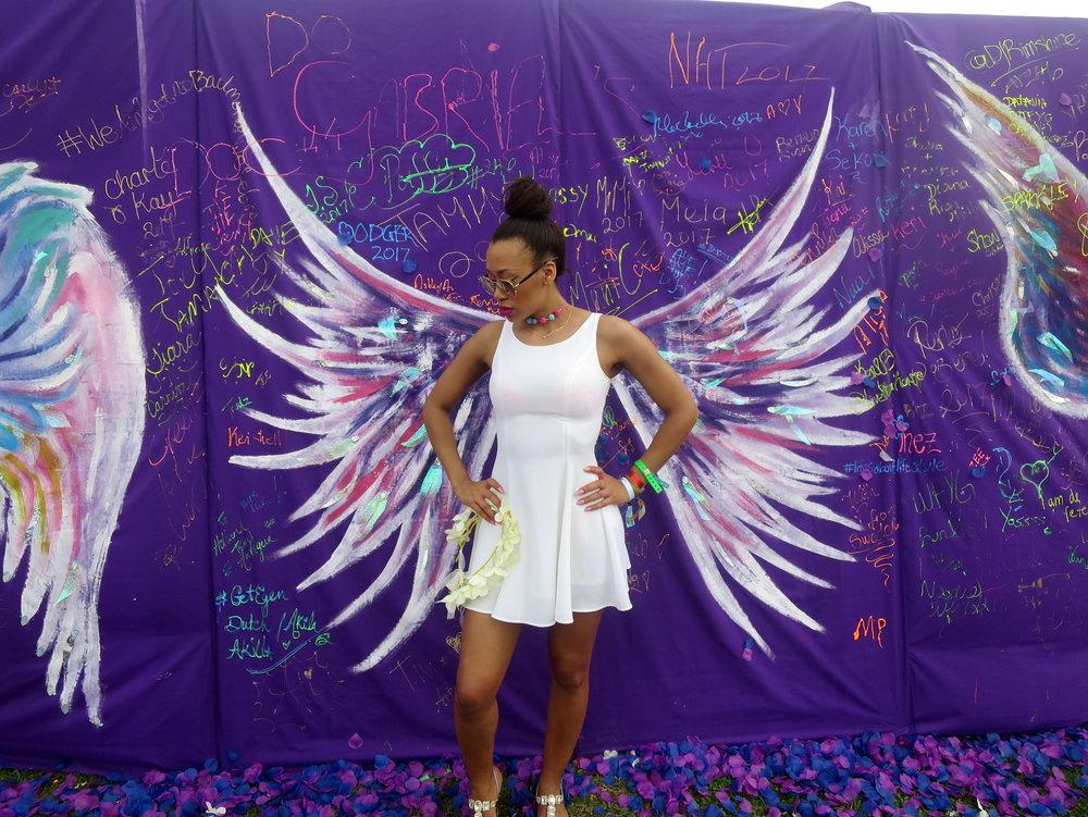 sbw wings.JPG