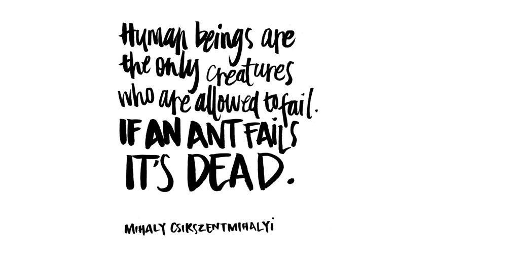 Dead-Ants-QuoteFACEBOOK.jpg