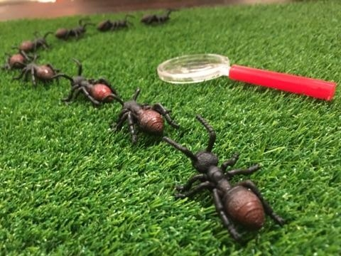 The fake grass table runners,   magnifying glasses   and plastic bugs made for the perfect centerpieces and added just enough bug touch to make the party look festive.
