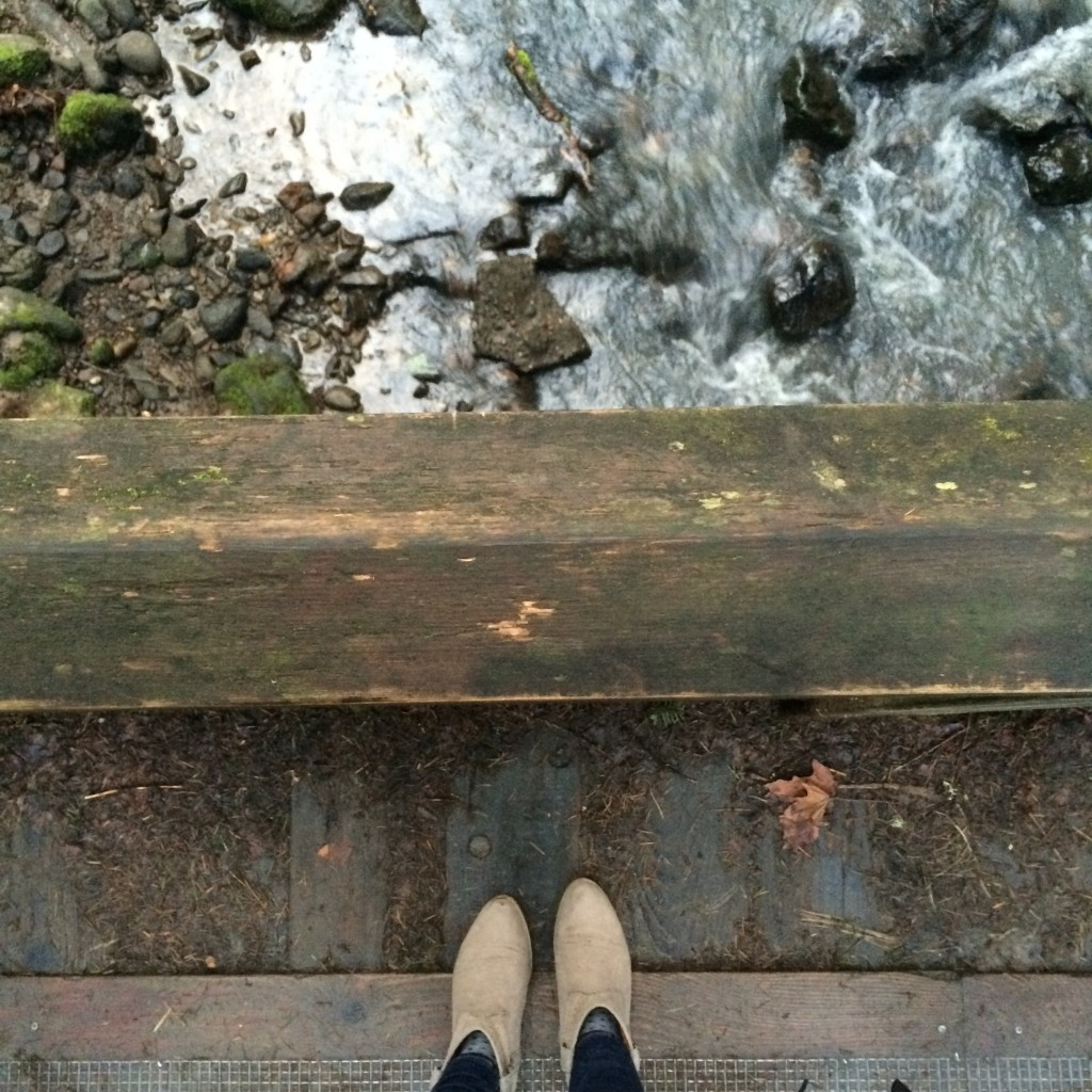 Gorge trekking