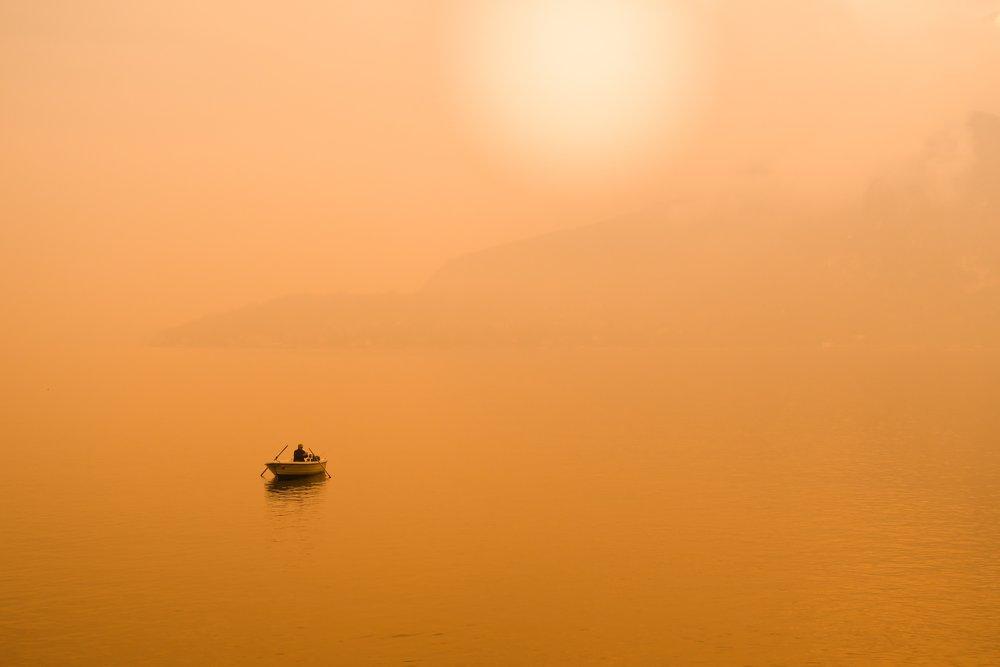 Photo by Daniele Levis Pelusi on Unsplash.jpg