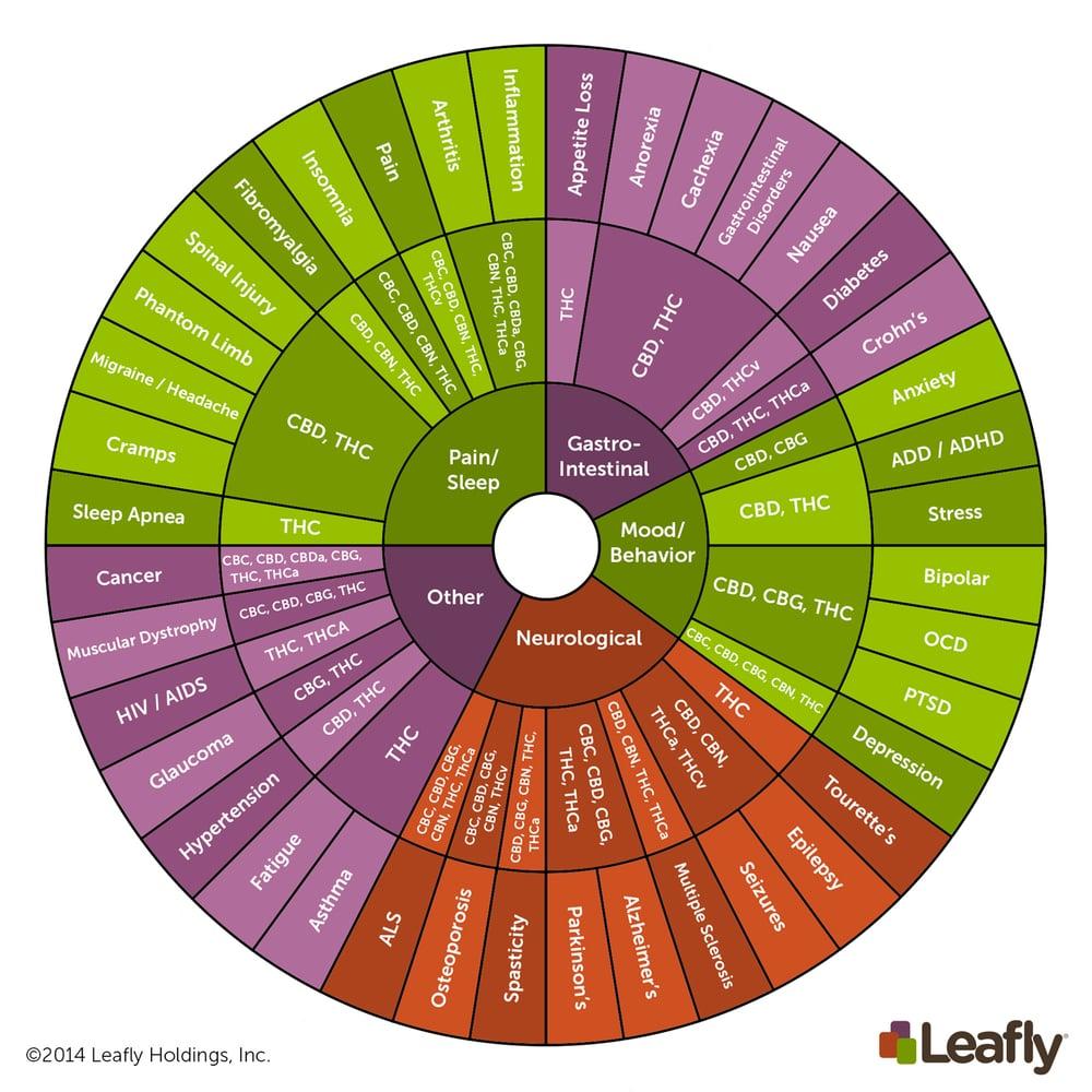 Cannabinoid Wheel