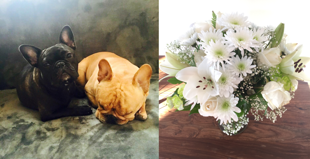 Puppy snuggles and flowers make everyone feel better.