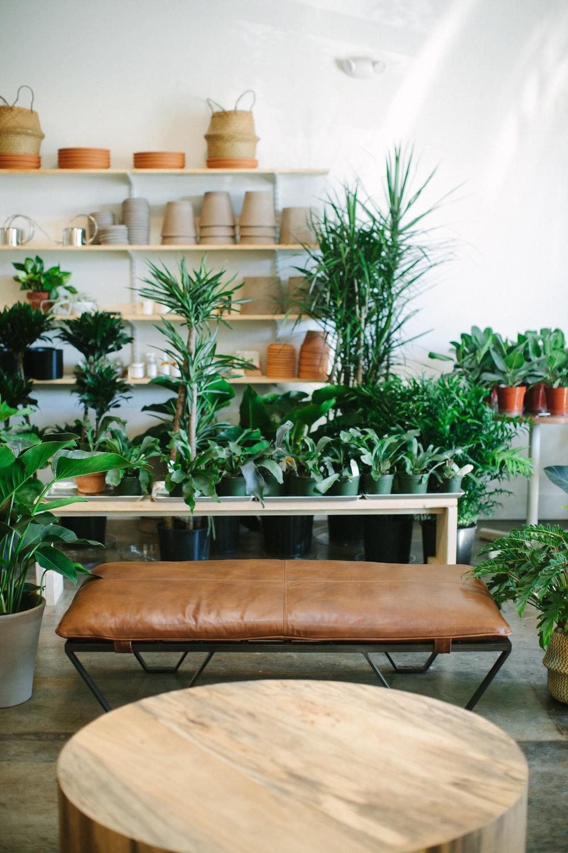 12th-Table-WEDDING-RENTALS-NASHVILLE-Design-Tips-Hosting-ENTERTAINING-Series-HowIHost-How-to-Host-Flora-Plant-Shop-27.jpg