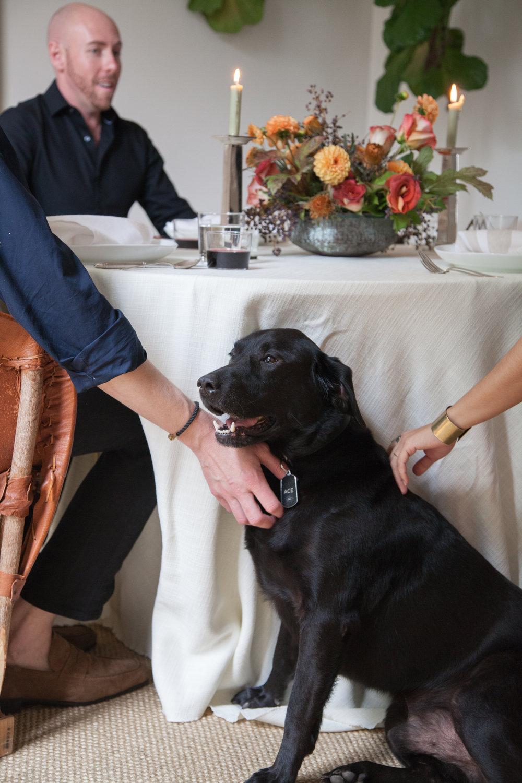 12th-Table-WEDDING-RENTALS-NASHVILLE-Design-Tips-Hosting-ENTERTAINING-Series-HowIHost-Jason-Arnold-Interiors-Carl-Denton-Events-DinnerParty-88.jpg