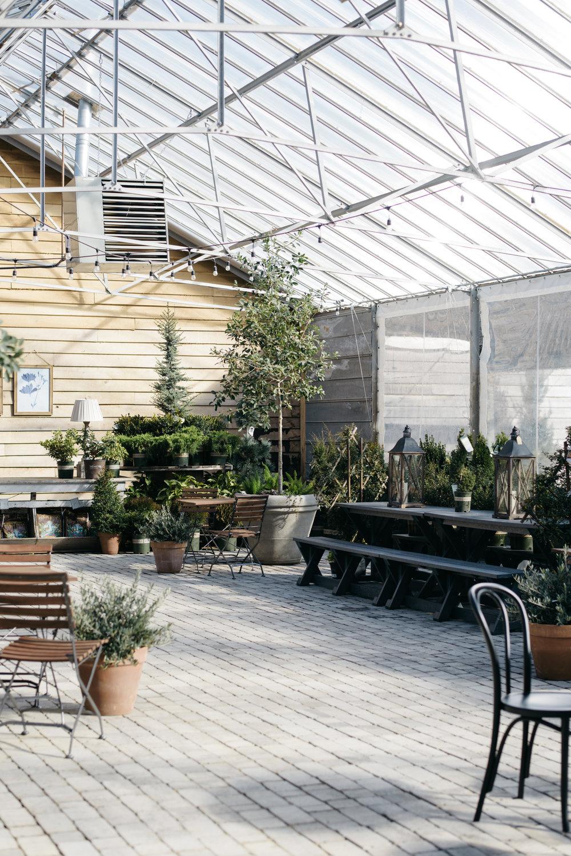 12th-Table- Long-Hollow-Garden-112.jpg