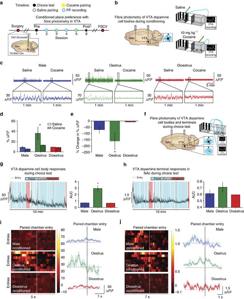 Figure 4. Calipari et al., Nature Communications, 2017