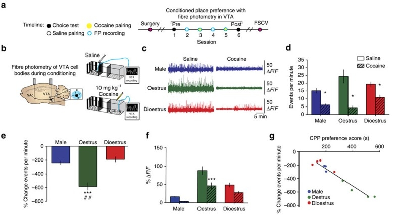 Figure 2. Calipari et al., Nature Communications, 2017; VTA cell body recordings