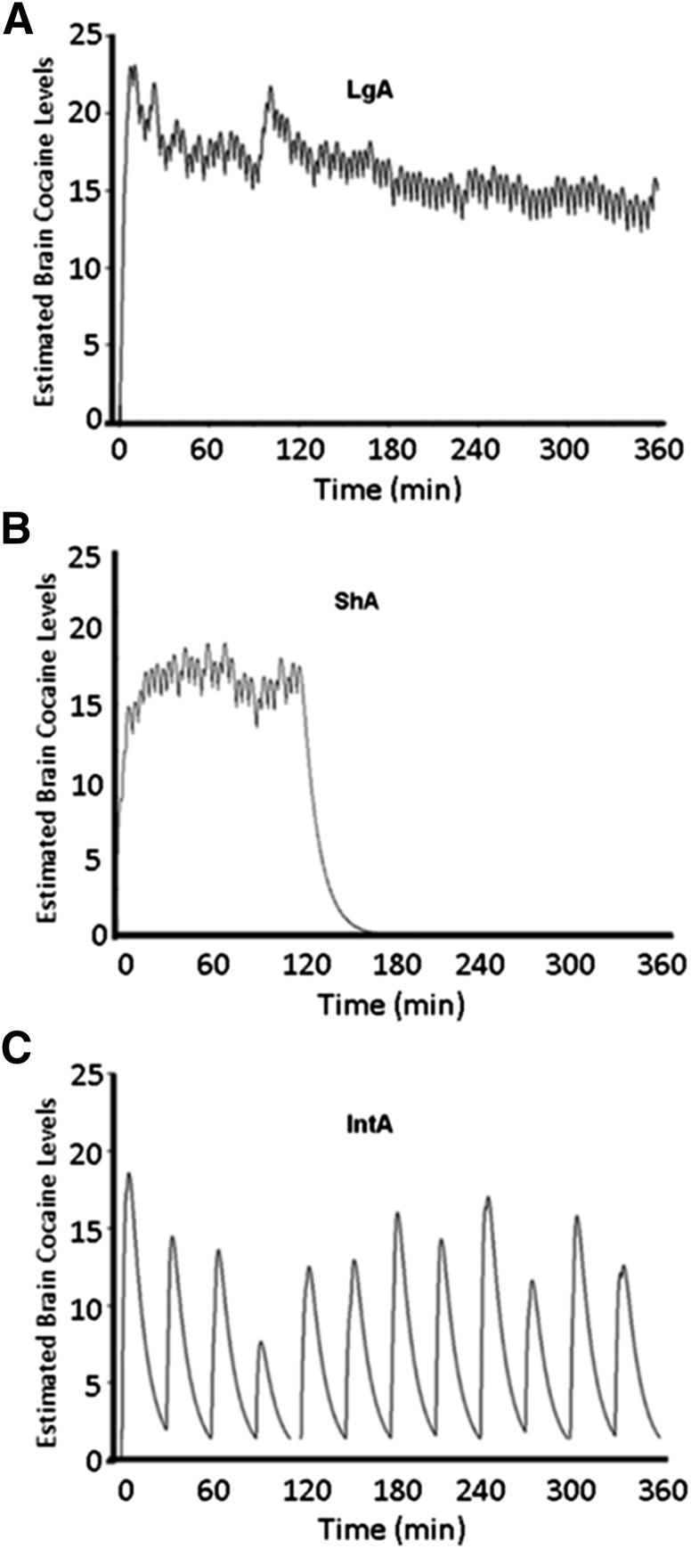 Figure 1. Calipari et al., Neuropsychopharmacology, 2015