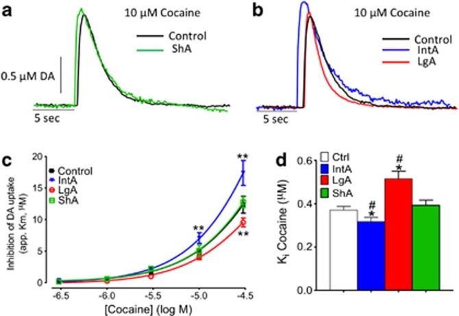 Figure 3. Calipari et al, Neuropsychopharmacology, 2013