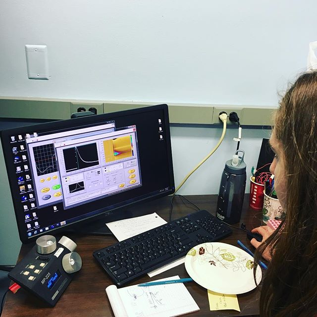 Gracie's first dopamine! #fscv #caliparilab #voltammetry