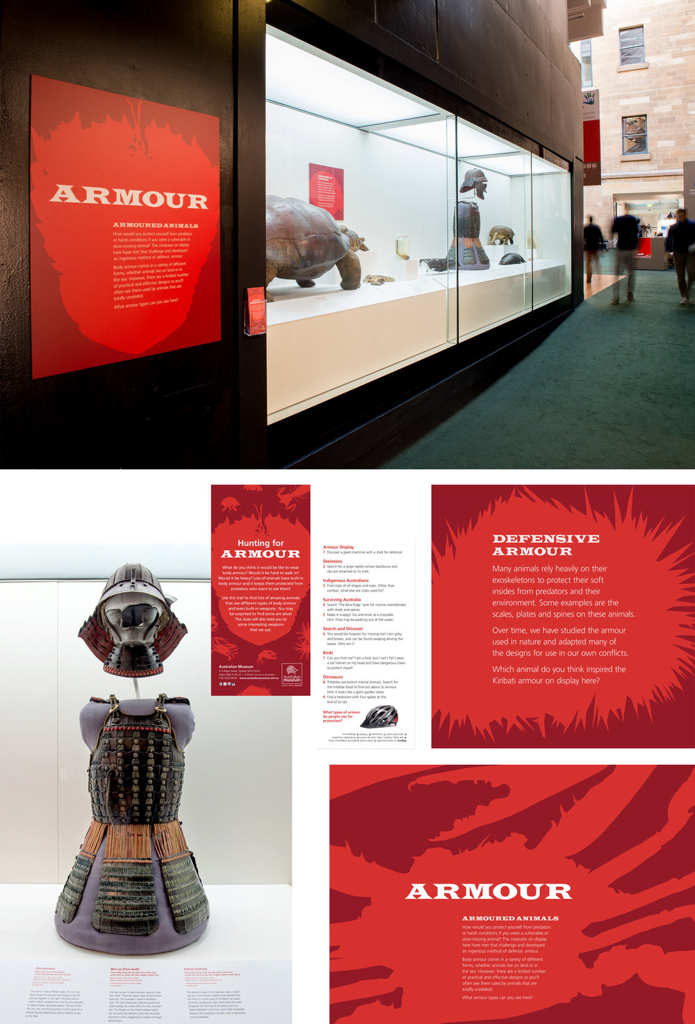 client Australian Museum   project Armour exhibition | hallway display and educational collateral