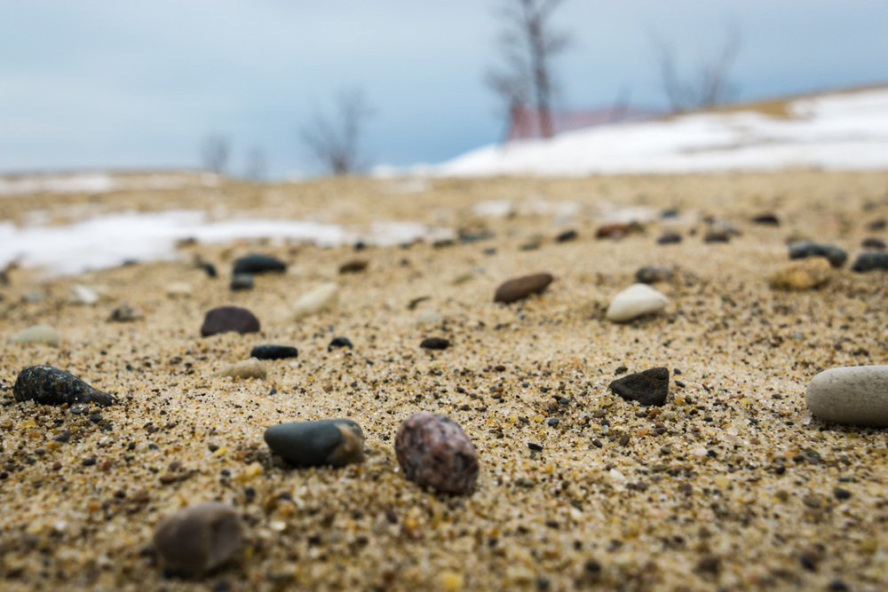 Pebbles at Warren Dunes State Park