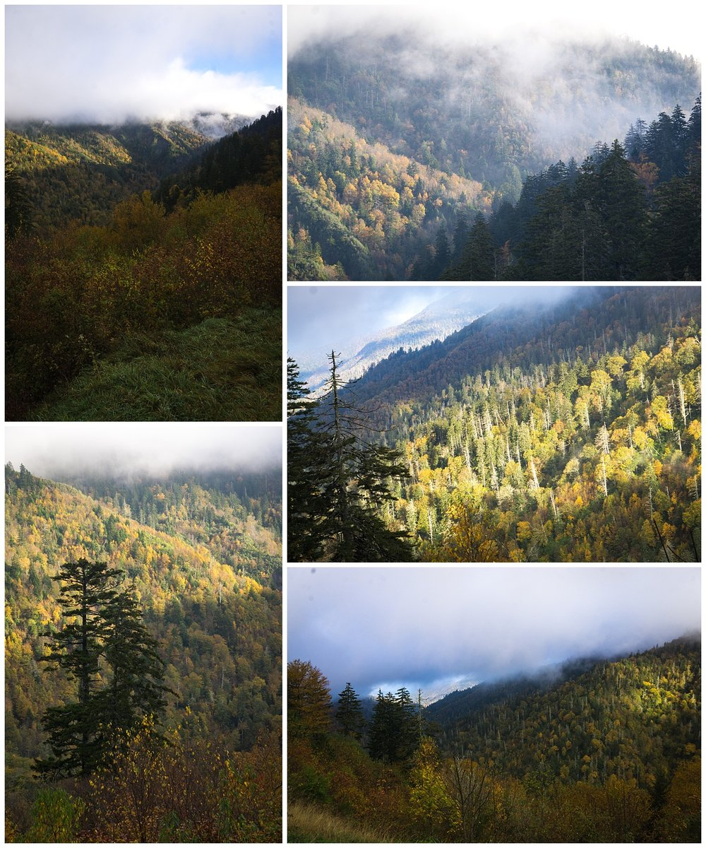 Landscape Photography of the Great Smoky Mountains