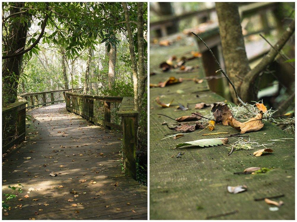 CCPhoto_MagnoliaPlantation_OCT17-118.jpg