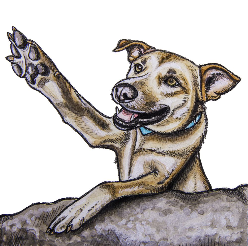 Illustration of dog giving high rock while on rock