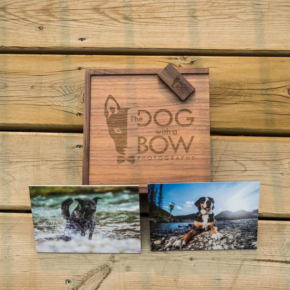 The-dog-with-a-bow-photography-calgary-cochrane-2.jpg