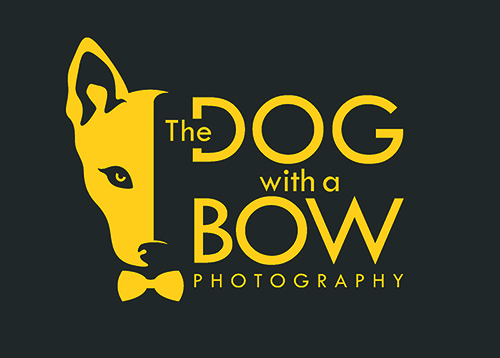 The Dog with a Bow Photography logo of a dog and a bow