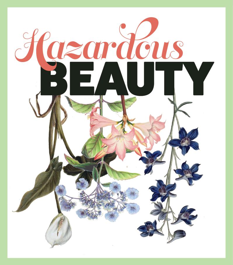 Hazardous-Beauty-logo_color.png