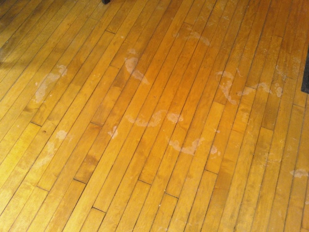 The baby footprints that were left in the lobby in the middle of the night. They lead to nowhere, and appeared as if from nothing.