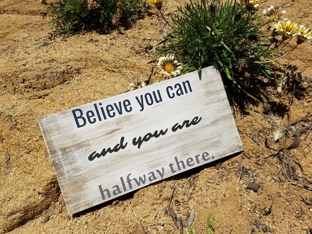 believe you can and you are halfway there 2.jpg