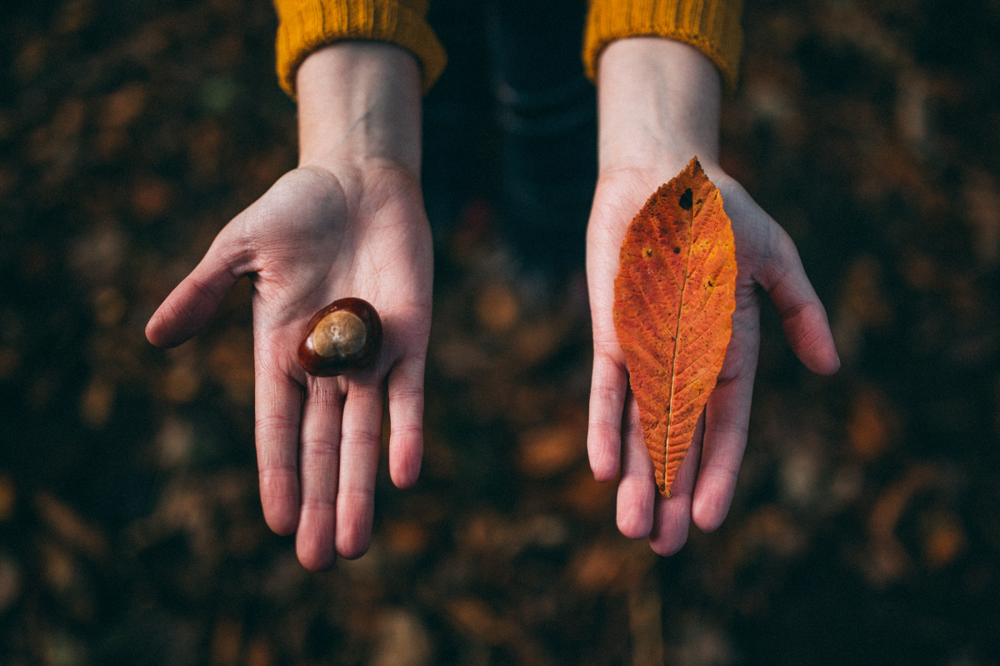 Photo by  Felix Russell-Saw on  Unsplash