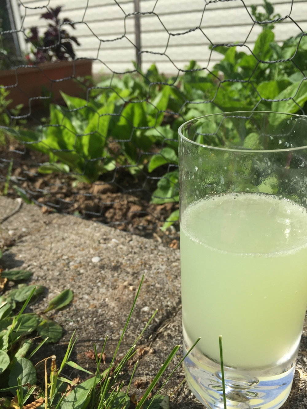 This weekend was so gorgeous, I had to drink this lemonade out by the garden!