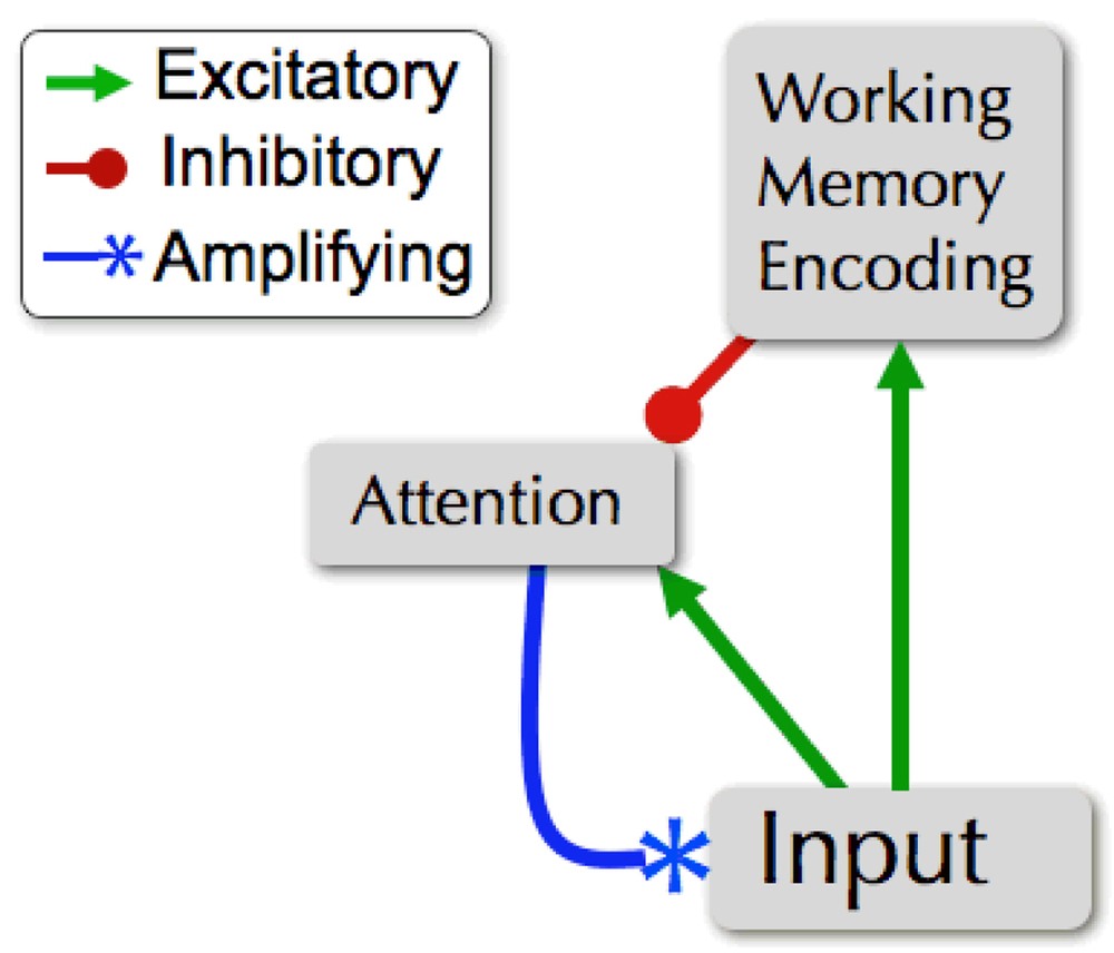 """See that little red arrow with the dot on the end? That's your working memory saying, """"Hold up! I need a millisecond over here."""" Click through for a link to the full article."""