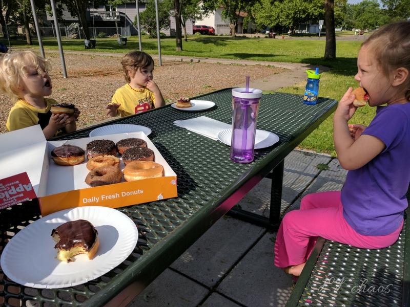 donut picnic