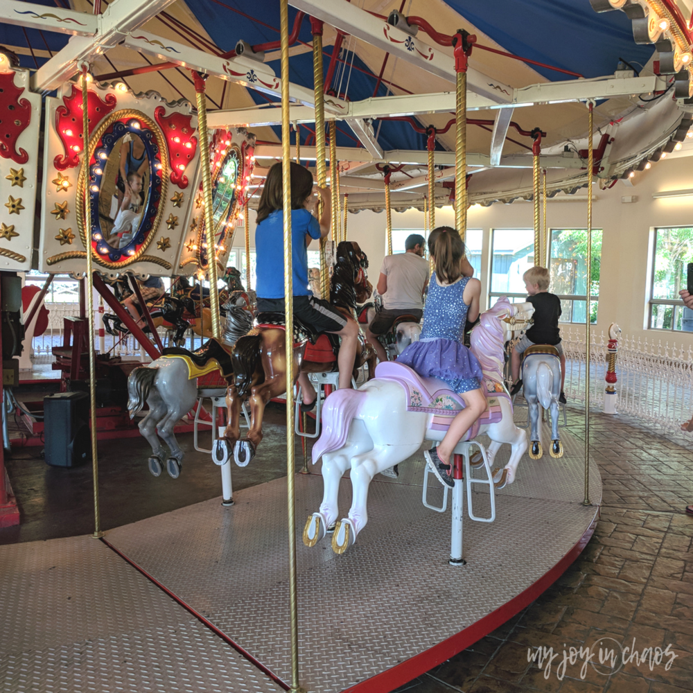 zoo trip and carousel ride with kids